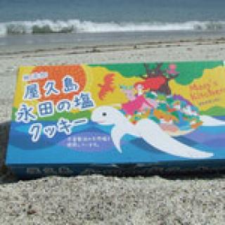 屋久島永田の塩クッキー
